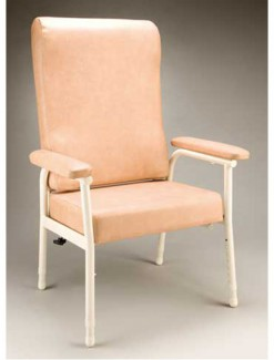 Franklin Chair - Assistive Furniture/High Back Chair