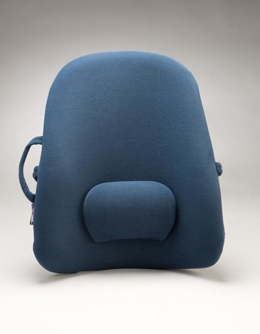 Obus Forme Back Support in Pillow & Supports/Back Support