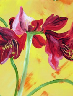 Amaryllis Flower Coated Table Cloth, Placemats & Aprons - Daily Aids/Dining & Eating Aids