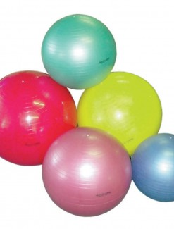 Physiomed PROBALL - Fitness & Rehab/Exercise Balls & Accessories